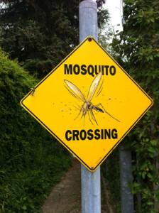 Jedes Jahr sterben fast eine halbe Millionen Kinder an Malaria an der Lebensgefährliche Tropenkrankheit