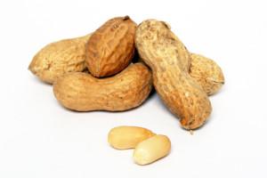 Erdnussallergie: Orale Immuntherapie kann diese gefürchtete Nahrungsmittelallergie lindern