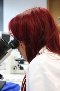 Neue Medizin aus Schneealgen: Natürliche Substanzen mit antibiotischer Wirkungsweise