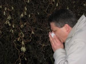 Heuschnupfen-Symptome vernebeln die Sinne, genauso wie 0,5 Promille Alkohol im Blut
