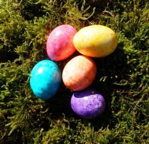 Ostereier färben mit natürlichen Farben von Gemüseppflanzen